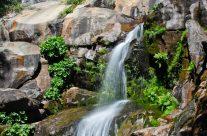 CorLieu Falls, Lewis Creek