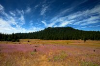 Yosemite National Park High Country