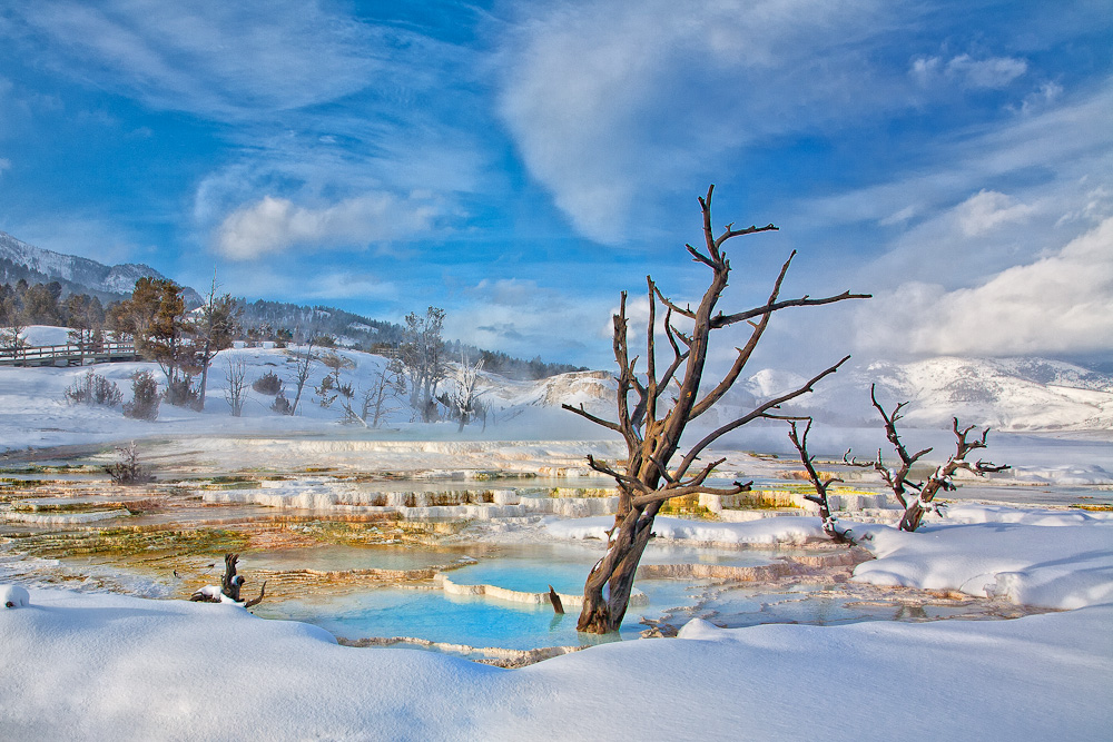 Yellowstone National Park, Mammonth Sprints