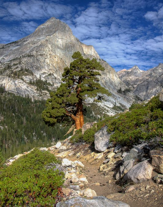 Le Conte Canyon: Between Muir and Bishop Pass