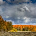 Utah fall colors