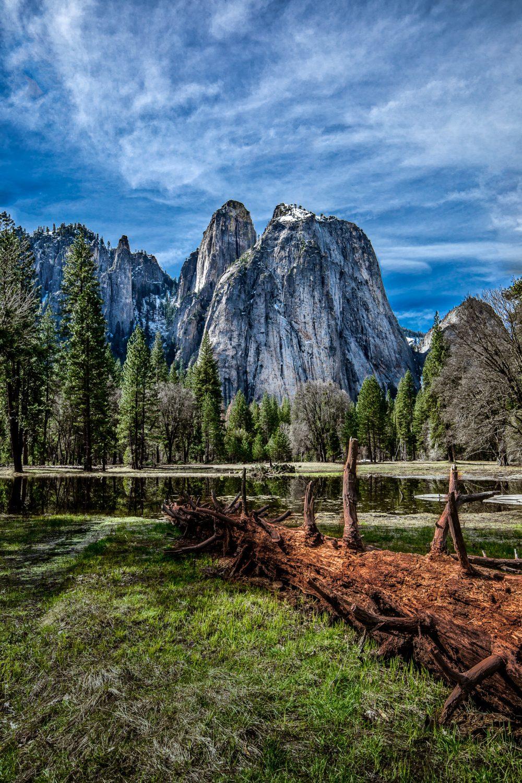 Yosemite Spring-4
