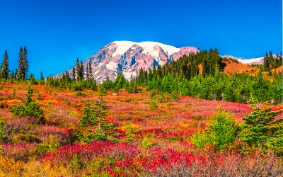MT RAINER – IN FALL GLORY